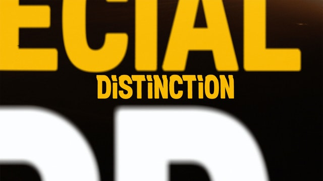 Special Distinction Award.