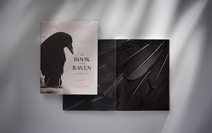 Ah Book Of The Raven 01