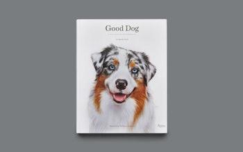 Djs Gooddog 1