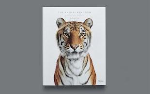 Djs Animalkingdom 01 Cover