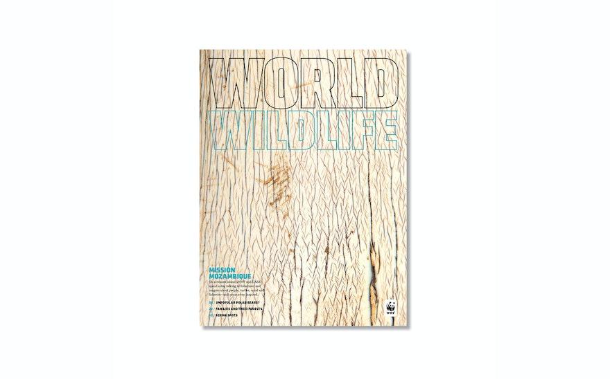 Djs Wwfmagazine 01