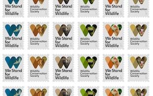 Mb Wildlifeconservationsociety 01