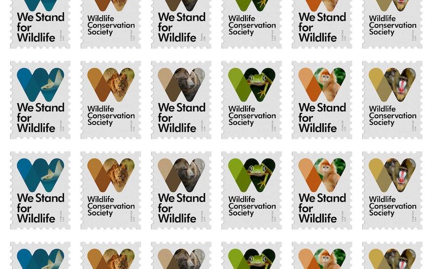 Wildlife Conservation Society Story Pentagram