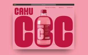 Mw Camuc Casestudies1