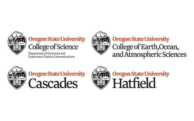 The new identity system uses the Roman typeface Newzald to unify the university's colleges.